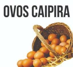 Ovos Galinha Caipira 8,50 duzia