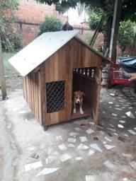 Casinha para cachorro porte médio