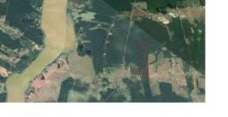 Vendo 100 hectares Município de Canutama AM, 48 Km de Porto Velho