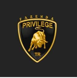 Fazenda Privilege - Porteira fechada