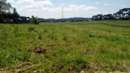 Terreno em catanduvas