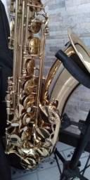 Sax tenor shelter lindo