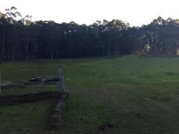 Vendo Sítio em Nova Santa Rita - 4,6 hectares
