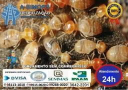 Cupim cupins, serviços de saúde dedetização 3642 2201 99288 0020