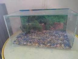 Tenho esses dois aquários para vender