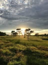 Oportunidade : Fazenda beira rio