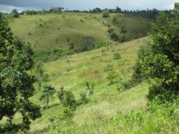 Fazenda de Gado em Ubatã / BA 270 Hectares