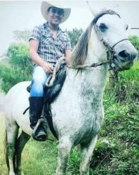 Cavalo manga larga s/ registro