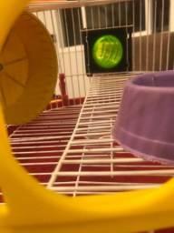 Vendo gaiola de hamste nova