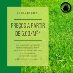 Título do anúncio: Grama Natural Esmeralda ou Mato Grosso (Batatais)