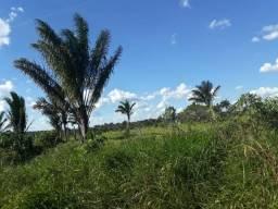 Propriedade Rural Município de Apuí/Amazonas