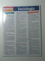 Resumão sociologia