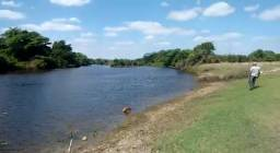 Oportunidade: Fazenda Lajedo Alto, Itatim, 1800 tarefas, margem Rio Paraguassú