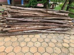 Escoras de eucalipto para laje