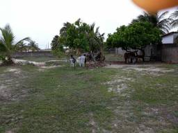 Vende-se terreno tipo granjinha na praia de graçandu