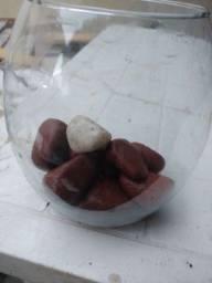 Pedras de decoração de aquario
