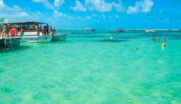 Venha conhecer a Praia de Maragogi , caribé brasileiro