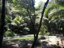 Aluga diária sítio, com passeios ecológico, piscinas naturais, trilhas, banho de argila,