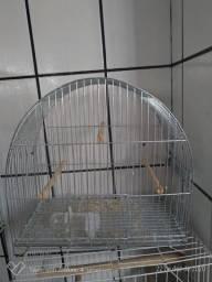 Gaiola passarinhos para periquito, canário