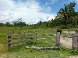 Bela Fazenda em Aripuanã