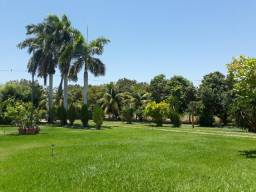Chácara à 13km do centro, próximo ao Rodeadoro-Petrolina