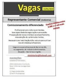Representante Comercial (Industria)