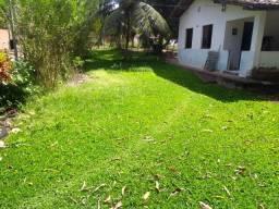 Oportunidade de Compra!!! Chácara em Panaquatira com 1 hectar e 300 metros quadrados