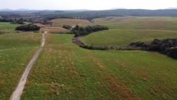 Título do anúncio: 90 hectares com 65h. de lavoura