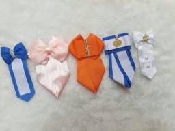 Título do anúncio: Gravatinhas Pet