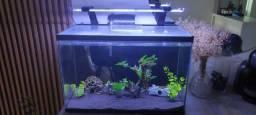 Título do anúncio: Vendo aquário de 72 litros em até 12x