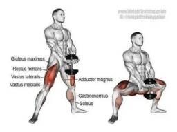 Agachamento sumô - Iron Bel Fitness