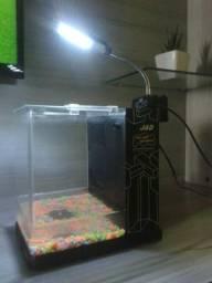Lindo aquario curvo pequeno 23cm.por 23cm