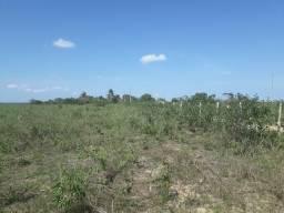 Fazenda com 150 hectares na região macaiba e bom jesus