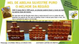 Mel de Abelha Puro Prudentopolis Silvestre