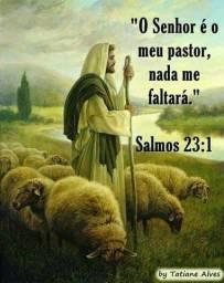 Ajude essa família, em nome de Jesus!.
