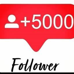 Seguidores Instagram 67- *