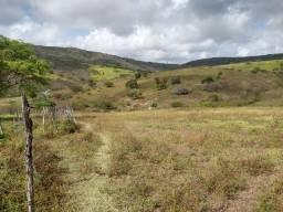 Título do anúncio: Fazenda em Bezerros 40 hectares