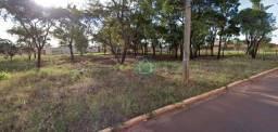 Terreno à venda, 480 m² por R$ 240.000,00 - Vila Ipiranga - Campo Grande/MS