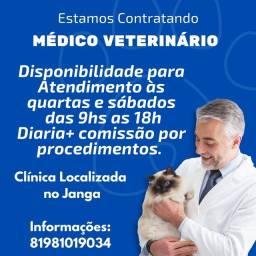 Título do anúncio: Vaga para médico veterinário