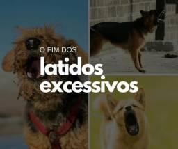 Adestramento de Cães - Guia Completo
