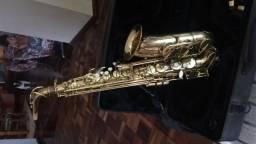 Saxofone Alto Dolphin + acessórios