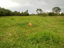 Fazenda 7 Alqueires as Margens BR 414