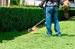 Título do anúncio: Limpeza de terrenos