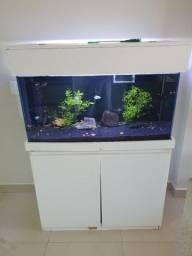 Vendo aquário com sump 200Lt