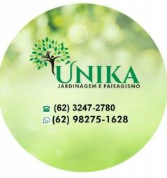 Título do anúncio: Jardineiro e paisagismo