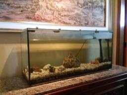 Aquario grande completo de 150 litros