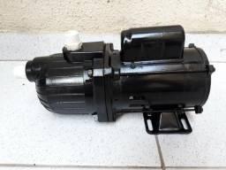 Bomba Autoaspirante Dancor AP-2R 1/3CV