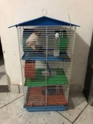 Vendo tudo 3 hamster com a casa
