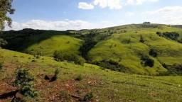 Fazenda de 123 alqueires de pasto .120 km de Guarapuava PR R$ 7.400.000,00