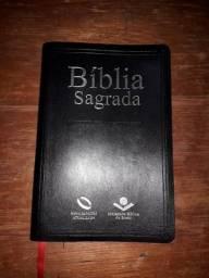 Biblia nova Almeida atualizada Mais livro teólogico